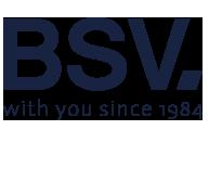 logo%20bsv_1.png